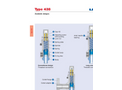 Model Type 438 - Threaded and Flanged Safety Valves Brochure