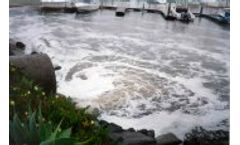 Ambient Water, Stormwater, & Whole Effluent Toxicity Service