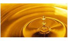 Biodiesel Supply