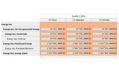 Seram - Data Grid Software