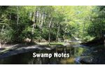 Swamp Notes Vol.19 Ep. 10 - Video