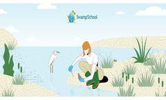 Swamp School Online Classes - Video