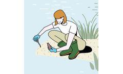 Online Wetland Basic Delineation Training