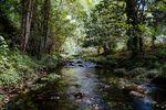 Stream Restoration Part 3 - Stream Ecology Stream Training Courses