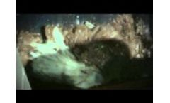 Jupiter & Komet: EBS - SRF Video