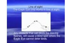 A Guide to Placement of the Eagle Eye Bird Deterrent Device on Buildings - Video