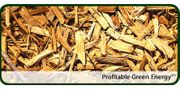 Automated Wood Chip Biomass Boilers