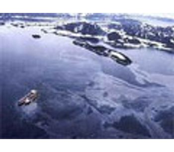 Beach structure explains persistence of 1989 oil spill
