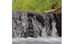 Nutrient levels on the decline in many Estonian rivers