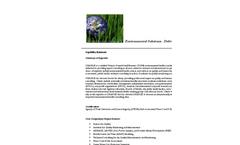 Change Capability Statement Brochure
