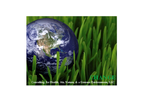 Expert Environmental Consulting Services