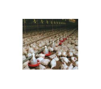 Winchable Poultry Feeding Systems