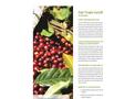 Fair Trade Certification Brochure
