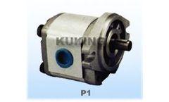 Model P1 - Gear Pumps