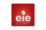 Complex Global Project Management Services