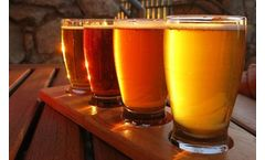 Wastewater treatment solutions for the brewery wastewater industry