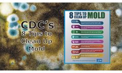 Mold Clean Up Tips from the CDC Discussed in New Online Video