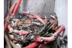 Copper Recovery - WAGNER WS30 Shredding VERY Large TECK Cable - Wire Chopper - Cable Recycling - Video