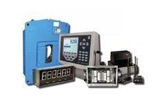 TWS - Model TW-CWS - Crane Weigh System