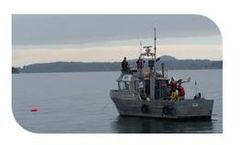 Marine Related Project Support Services
