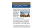 Research Report: Enterprise Sustainability Management - Emergence of a New Paradigm (LNS Research)