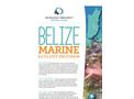 Belize - Marine Ecology Course Brochure
