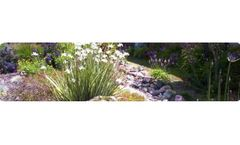 Landscape Design and Installation Services