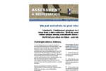 Assessment and Remediation Services