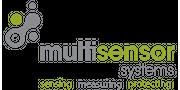 Multisensor Systems Ltd.
