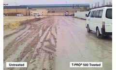 Project - Marl Soil Stabilization - Tubil, Bahrain
